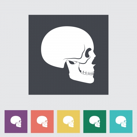 Anotomy skull Flat icon. Vector illustration. Stock Vector - 21025722