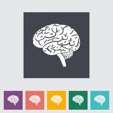body line: Vector illustration of a human brain. Single flat icon.