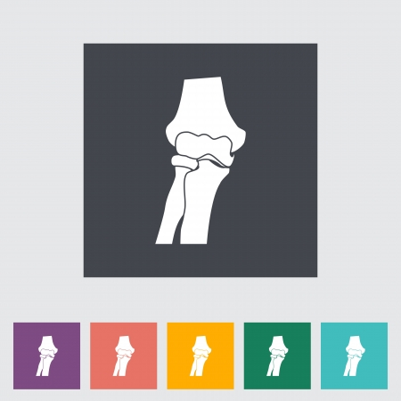 patella: Knee-joint single flat icon illustration. Illustration
