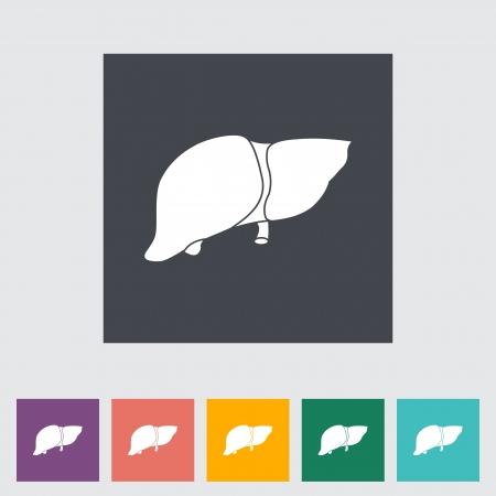 bile: Liver flat icon illustration.