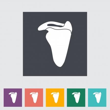 scapula: Scapula flat icon illustration. Illustration