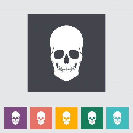 Anatomy skull flat icon illustration. Vector