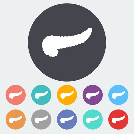 Pancreas. Single flat icon on the circle. Vector illustration. Vector