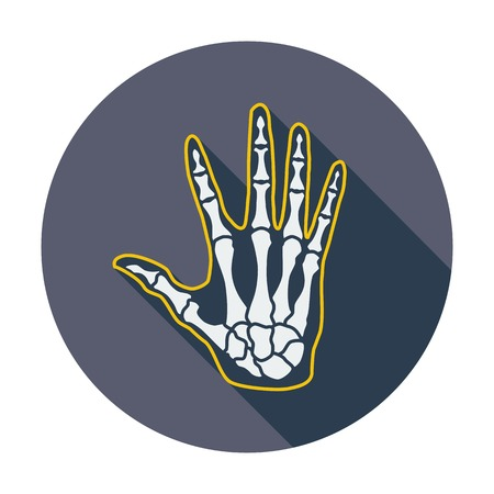 phalanx: Anatomia mano. Singola icona di colore piatto. Illustrazione vettoriale. Vettoriali