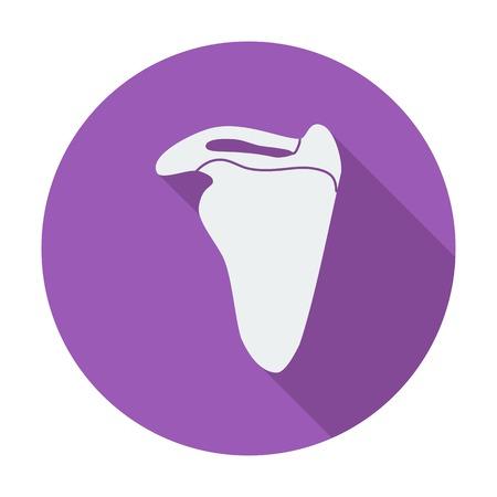 scapula: Scapula. Single flat color icon. Vector illustration.