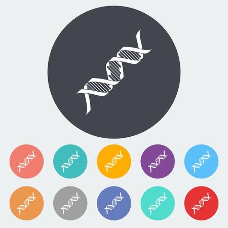 DNA icon. Vector