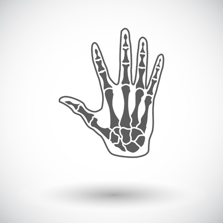 phalanx: Anatomia mano. Singola icona piatta su sfondo bianco. Illustrazione vettoriale. Vettoriali
