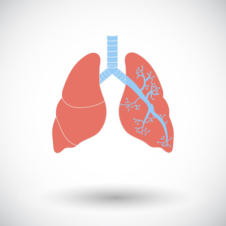 Lungs. Single flat icon on white background. Vector illustration. Vector Illustration