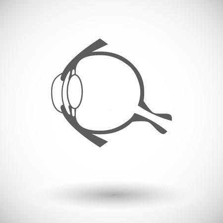 choroid: Anatomy eye. Single flat icon on white background. Vector illustration. Illustration