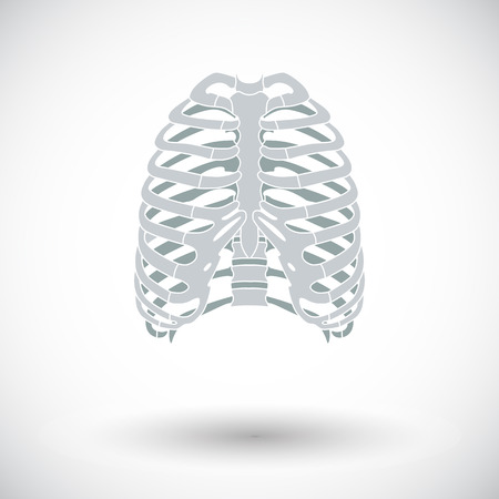 sternum: Human thorax. Single flat icon on white background. Vector illustration. Illustration