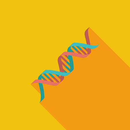 genetic modification: DNA icon. Flat vector related icon with long shadow for web and mobile applications.