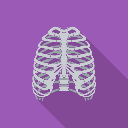 sternum: Human thorax icon. Flat vector related icon with long shadow for web and mobile applications.