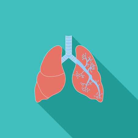 respire: Lungs icon. Flat vector related icon with long shadow for web and mobile applications. It can be used as   pictogram, icon, infographic element. Vector Illustration. Illustration