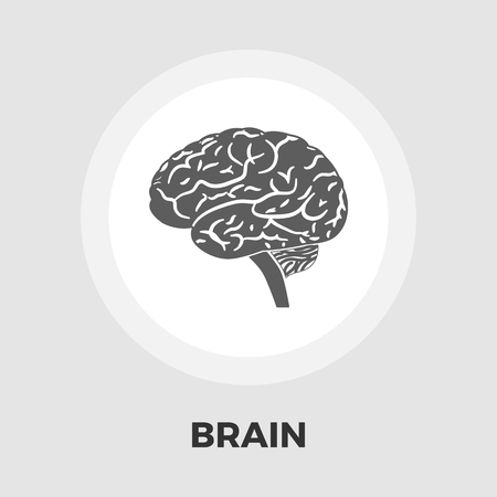 lobe: Human brain icon vector. Flat icon isolated on the white background. Editable file. Vector illustration.