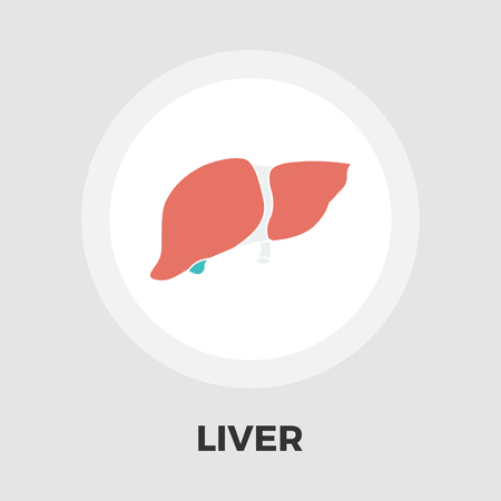 Liver icon vector. Flat icon isolated on the white background. Editable EPS file. Vector illustration. Illustration
