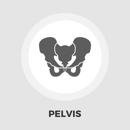 pelvis: Pelvis icon vector. Flat icon isolated on the white background. Illustration