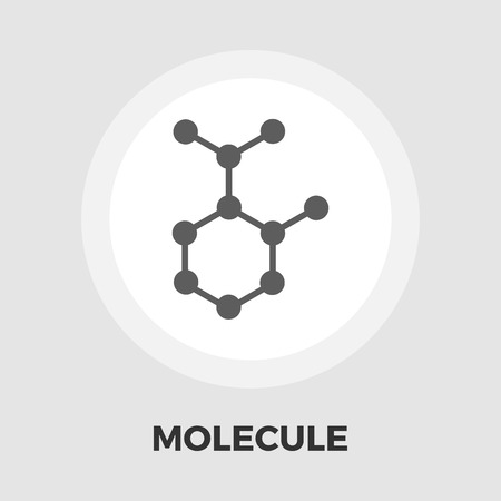 subsidiary: Molecule icon vector. Flat icon isolated on the white background. Editable EPS file. Vector illustration.
