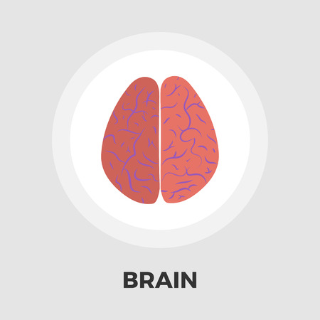 psychiatrist: Human brain icon vector. Flat icon isolated on the white background. Editable EPS file. Vector illustration.