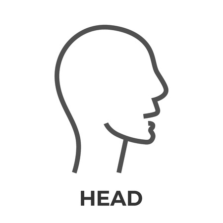 mentally: Head Thin Line Vector Icon Isolated on the White Background.