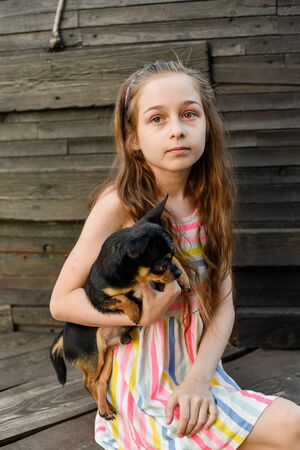 Portrait of pretty small girl with pet. The child spending time with her pet. Happy childhood. Little girl with chihuahua dog on the background of a wooden backdrop.Girl 9 years old in a striped dress