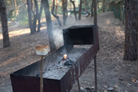 Marsh Mellow at the stake.marsh mellows on wooden skewers toasting over wood flames.Marshmallows in the form of a bear fried at the stake in the forest. Life style.Girl cooks marshmallows at the stake Фото со стока