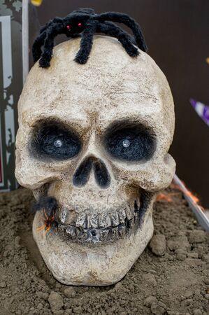 Halloween is coming soon, skeleton in striped suit and hat. Halloween is coming soon. Skeleton Skull Фото со стока