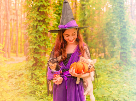 alloween. Cute little witch. Beautiful young child girl with a pumpkin in witch costume outdoors.