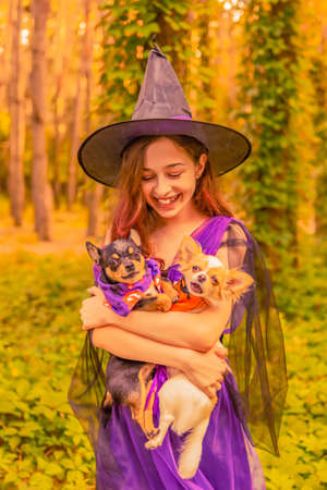Halloween. Cute little witch. Beautiful young child girl with dogs in witch costume outdoors.