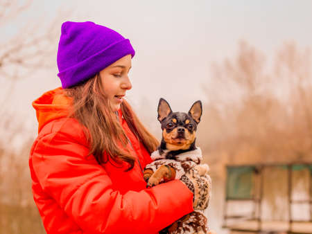Owner and pet. Little girl in an orange jacket and a purple hat with a Chihuahua dog in nature.