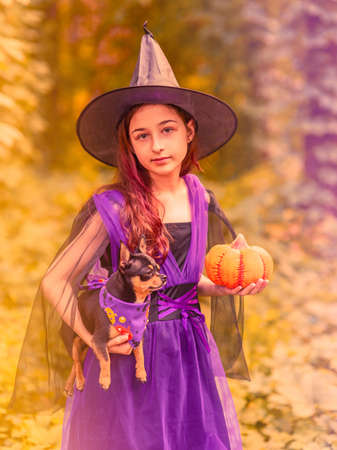 Halloween concept. A little girl in a witch dress with a pumpkin and a black dog in the forest.