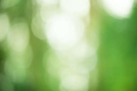 Green blurred background. Defocus light natural green. Фото со стока