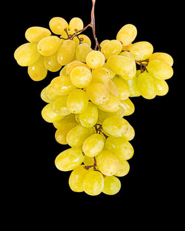 Bunch of grapes isolated on black background. Фото со стока