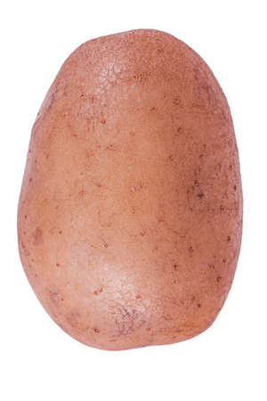 One potato isolated on a white background. Vegetable isolated.