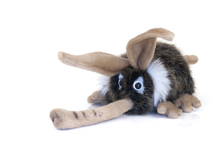 long nose: Soft Toy with a long nose