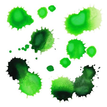Green watercolor splashes isolated on white background. Set of grunge splashes. Vector illustration. Illustration