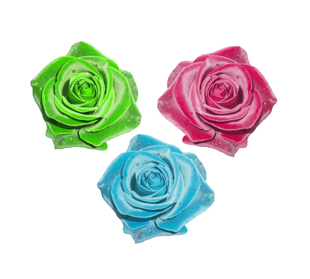photorealistic: Red rose. Green rose. Blue rose. Vector illustration. Rose flower isolated on white