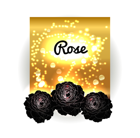 black roses: Vintage vector bouquet of black roses. Gold bokeh background with black roses. Golden space and roses. Vector illustration. Vintage red black background.