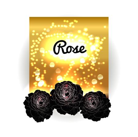 rosas negras: Vintage bouquet of black roses. Gold bokeh background with black roses. Golden space and roses. Vintage red black background.