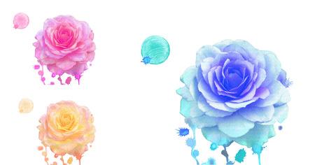 orange rose: Watercolor roses set. Watercolor blue rose, orange rose, pink rose