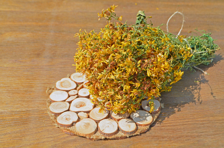 wort: St. Johns wort dried on a wooden table. Medicinal plant. Hypericum perforatum.