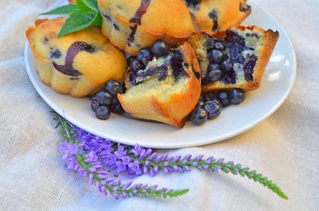 blueberry muffin: Homemade blueberry muffins. Fresh blueberry muffin