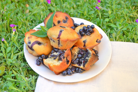 blueberry muffin: Fresh blueberry muffin. Top view. Muffins with blueberries. Homemade blueberry muffins with berries on a plate Stock Photo