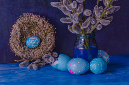 Branch of a willow on a wooden rustic blue background. Small twig of willow with spring catkins and blue Easter egg in the nest Stock Photo