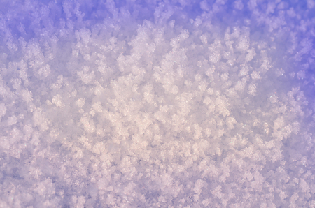 Background of fresh snow. Natural winter background. Snow texture in blue tone