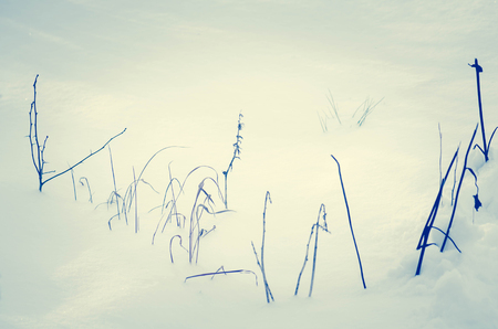 Snow texture in blue tone. Snowy nature winter background Stock fotó