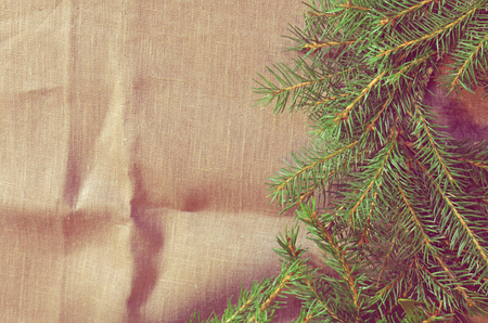 Branch of Christmas tree on sackcloth background.  Tree branches Christmas decoration. Stock Photo