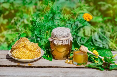 Honey pot, dipper, jar of fresh honey,  honeycomb on a wooden table outdoors. Honey with honey dipper on wooden table. Ukrainian country life
