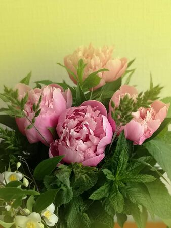 Bouquet of fresh pink peonies. Bouquet of peonies flower in soft style.