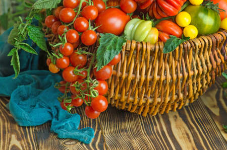 Fresh red tomatoes in basket in the kitchen. Tomatoes on a wooden surface.