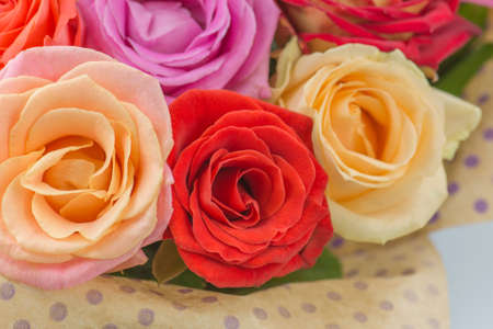 Mixed colorful roses full blooming. Beauty roses flowers. Bouquet of fresh beautiful flowers.